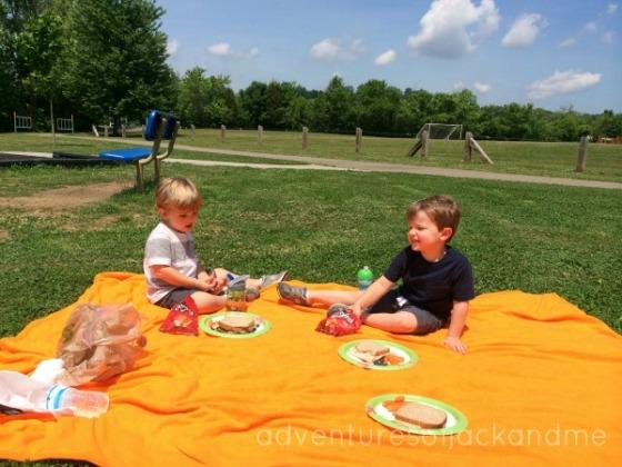 summer park picnic