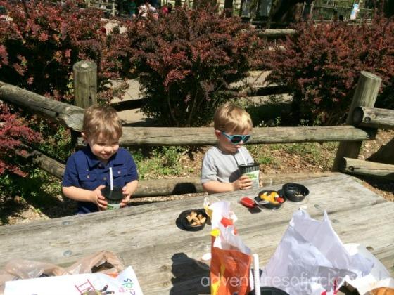 zoo picnic