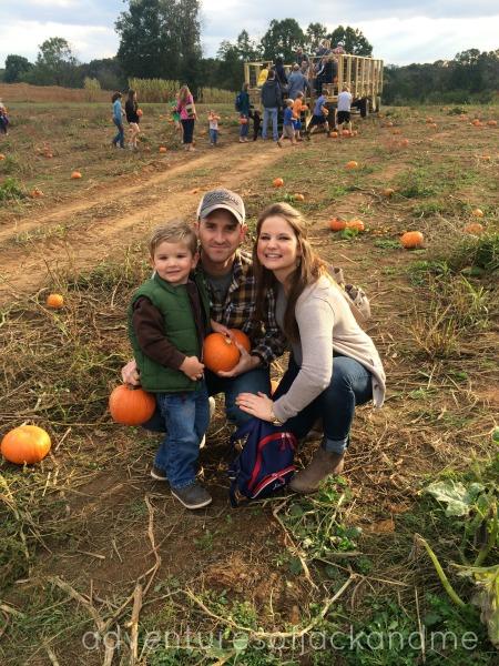 pumpkinpatchmorgans